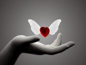 imagenes-de-amor-corazon-con-alas